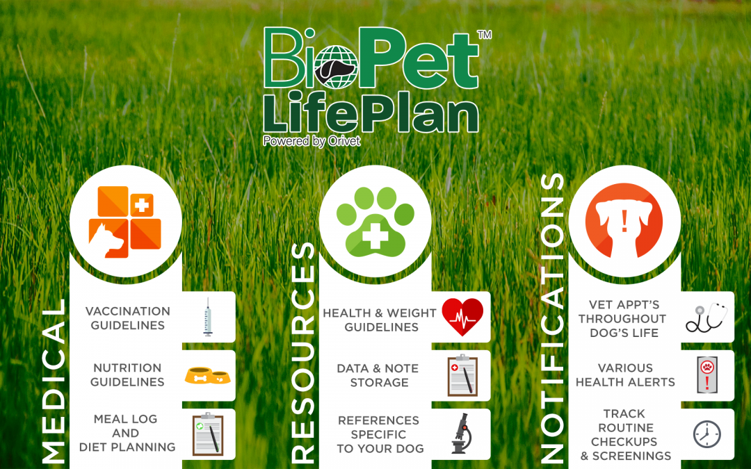 THE REVILL GROUP ANNOUNCES BIOPET LIFE PLAN™